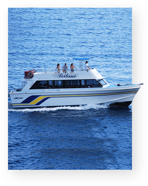 The best private charter and snorkel adventure cruise on Maui.