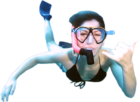 Snorkeling with underwater marine life on the top afternoon boat charter.