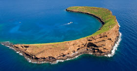 Best Maui Morning Molokini crater Boat Cruise