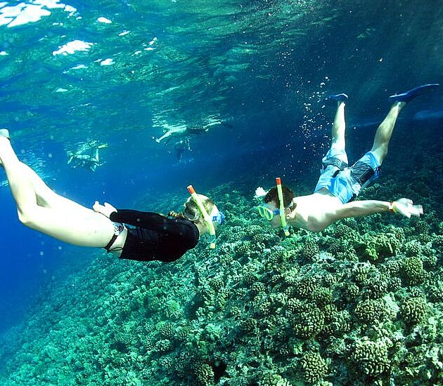 Best Maui Snorkel and SNUBA tour.