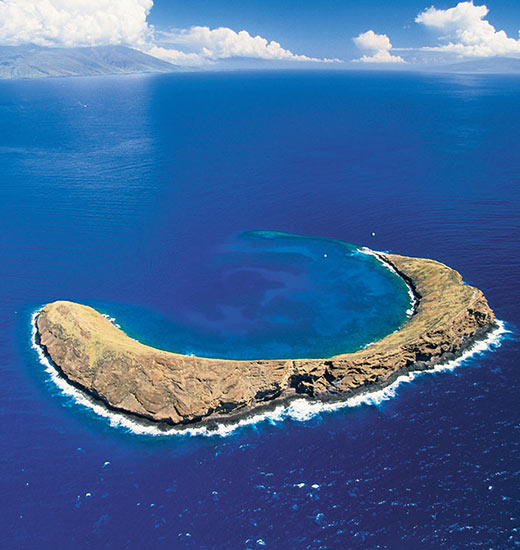 Best Morning Molokini Crater Tour