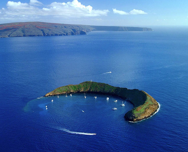 Molokini crater Tour with Underwater Marine Life