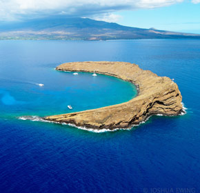 Morning Molokini crater tour.