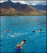 Maui Snorkel Charter to Turtle Town features SNUBA.