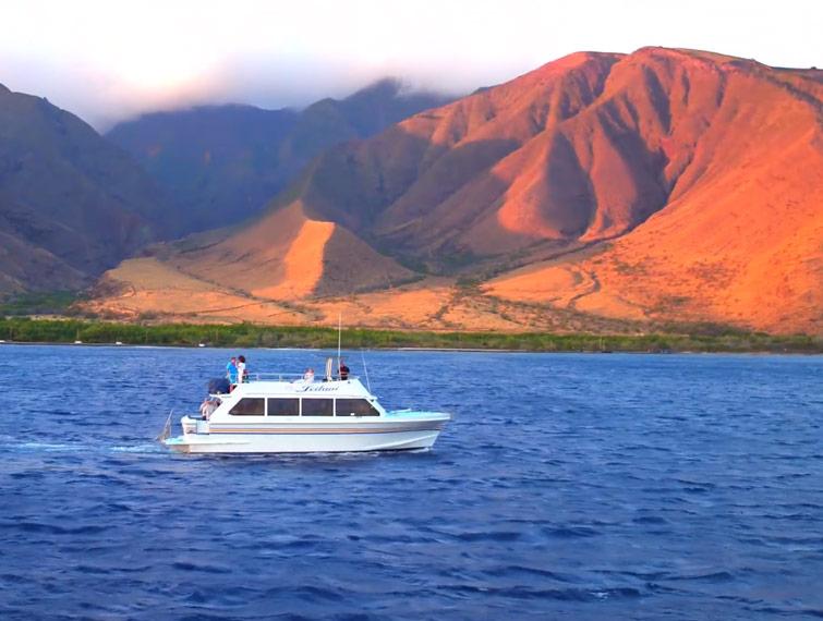 Leilani yacht cruising