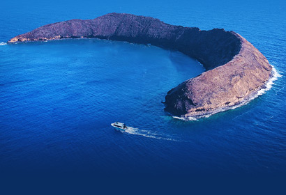 Molokini Crater on the Best Day on Maui morning tour.