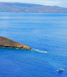 Best Molokini Morning Tour