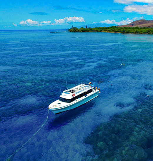 Top private adventure snorkel charter on Maui