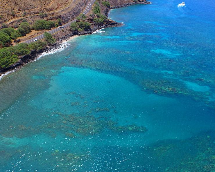Coral Gardens snorkel spot Maui
