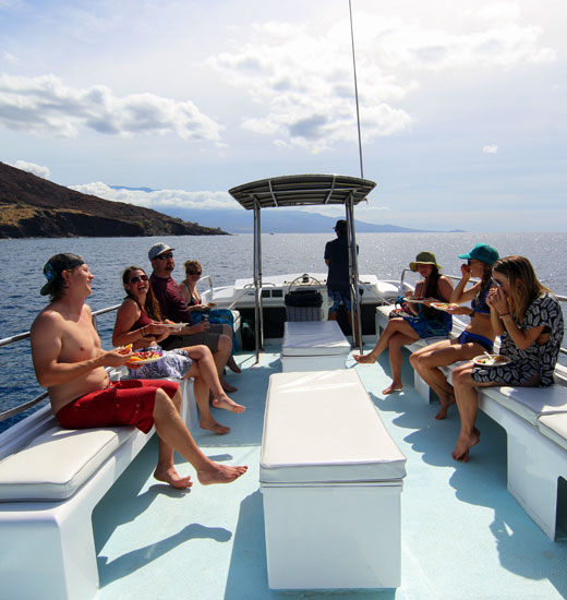 Top Whale Watch and Turtle Town Afternoon Snorkel Tours.